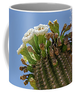 Coffee Mug featuring the photograph Saguaro Blooms by Gaelyn Olmsted