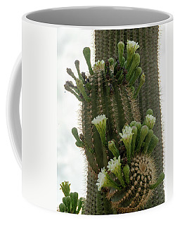 Coffee Mug featuring the photograph Saguaro Buds And Blooms by Gaelyn Olmsted