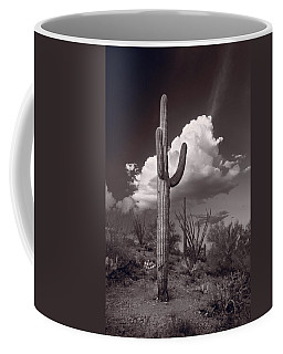 Saguaro Sunset Arizona Bw Coffee Mug