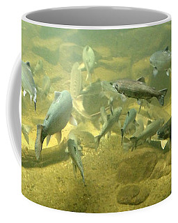 Salmon And Sturgeon Coffee Mug by Katie Wing Vigil