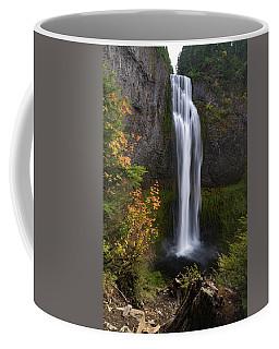 Salt Creek Falls Coffee Mug