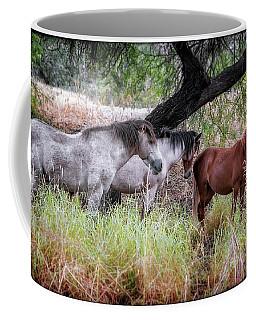 Salt River Wild Horses Coffee Mug