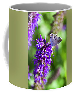 Salvia's Small Visitor Coffee Mug
