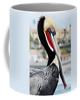 Coffee Mug featuring the photograph San Diego Pelican by Kyle Hanson