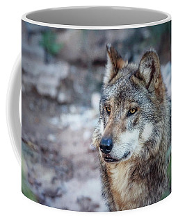 Sancho Searching The Area Coffee Mug