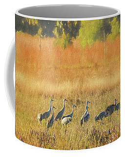 Sandhill Cranes, Indiantown Coffee Mug