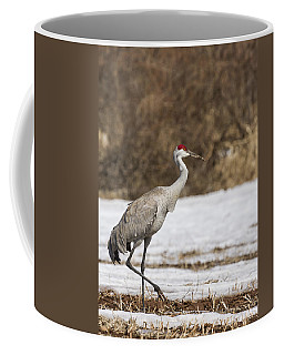 Sandhill Crane 2014-1 Coffee Mug