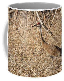 Coffee Mug featuring the photograph Sandhill Crane 2016-7 by Thomas Young
