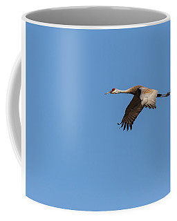 Coffee Mug featuring the photograph Sandhill Crane 2017-1 by Thomas Young