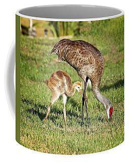 Sandhill Crane And Colt Coffee Mug