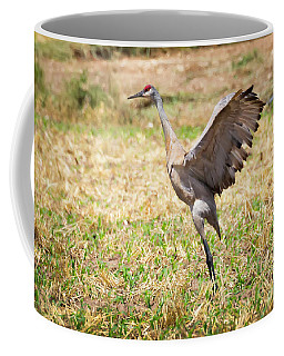 Sandhill Crane Morning Stretch Coffee Mug