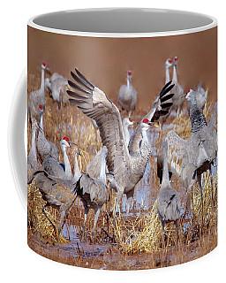 Coffee Mug featuring the photograph Sandhill Cranes by Irina Hays