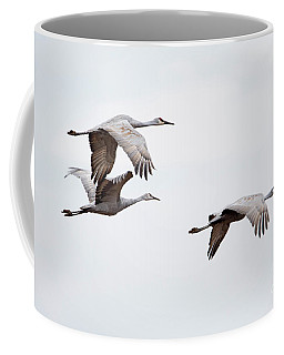 Coffee Mug featuring the photograph Sandhill Cranes by Paul Mashburn