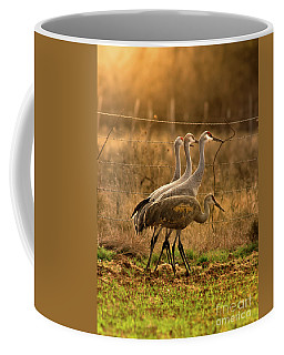 Coffee Mug featuring the photograph Sandhill Cranes Texas Fence-line by Robert Frederick