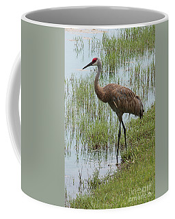 Sandhill In The Marsh Coffee Mug