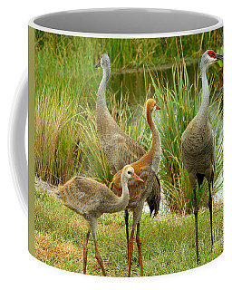 Sandhill Cranes On Alert Coffee Mug