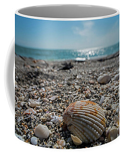 Sanibel Island Sea Shell Fort Myers Florida Coffee Mug