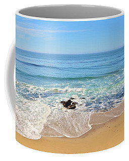 Santa Cruz Private Beach Coffee Mug