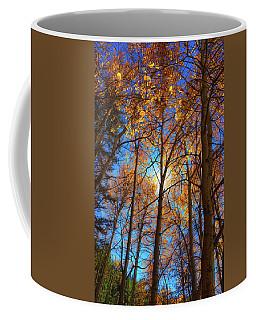 Santa Fe Beauty II Coffee Mug