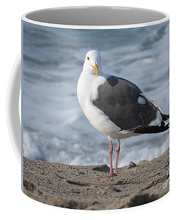 Santa Monica Seagull Coffee Mug