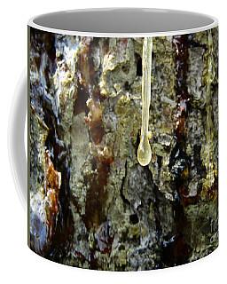 Coffee Mug featuring the photograph Sap Drip by Robert Knight