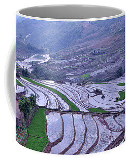 Sapa Rice Paddies Coffee Mug