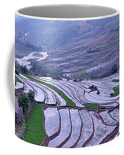 Sapa Rice Paddies Coffee Mug