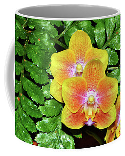 Sara Gold Orchids 003 Coffee Mug by George Bostian