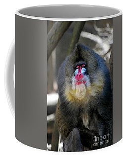 Sarcastic Smirk On The Face Of A Mandrill Coffee Mug by DejaVu Designs