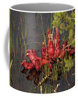 Sarracenia Bug Bat Plant Coffee Mug