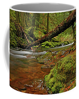 Coffee Mug featuring the photograph Sasquatch Country by Nick Boren
