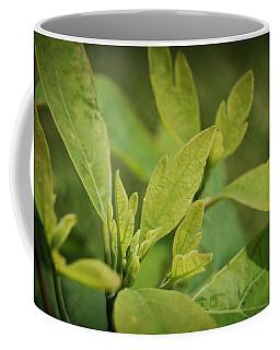 Sassafras Tree Coffee Mug