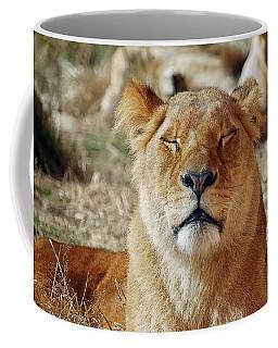 Savoring The Sun Coffee Mug