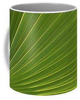 Saw Palmetto Detail Delray Beach Florida Coffee Mug