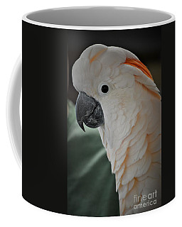Say Hello Sammy Coffee Mug