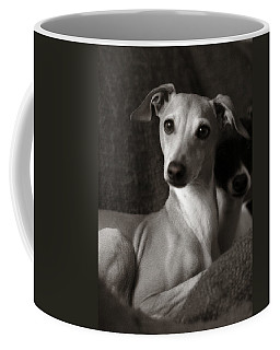 Say What Italian Greyhound Coffee Mug