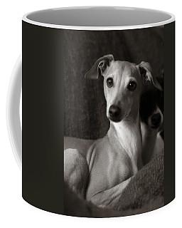 Say What Italian Greyhound Coffee Mug