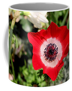 Scarlet Anemone Coffee Mug by Living Color Photography Lorraine Lynch