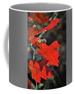 Scarlet Autumn Coffee Mug