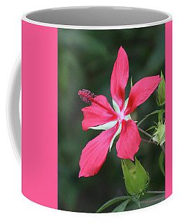 Scarlet Hibiscus #4 Coffee Mug