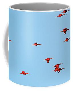 Scarlet Ibis At Caroni Swamp Coffee Mug