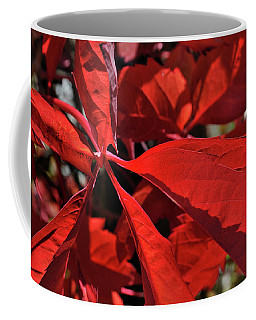 Coffee Mug featuring the photograph Scarlet Intensity by Ron Cline