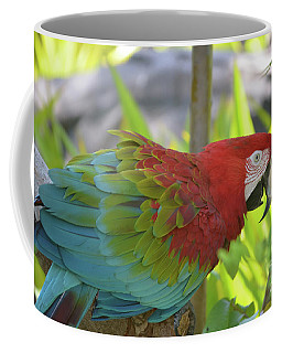 Scarlet Macaw Perched In A Tropical Tree Coffee Mug