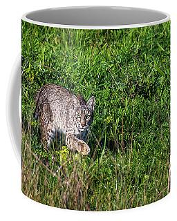 Scars Stalk  Coffee Mug