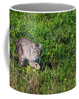 Scars Stalk  Coffee Mug