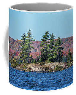 Coffee Mug featuring the photograph Scenic Fall View by Paul Freidlund