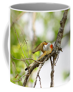 Scissortail Ballet Coffee Mug