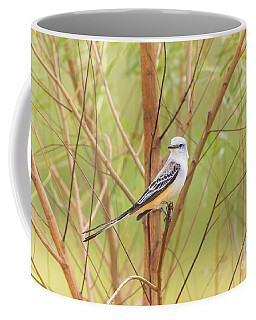 Coffee Mug featuring the photograph Scissortail In Scrub by Robert Frederick