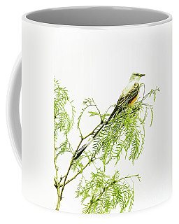 Coffee Mug featuring the photograph Scissortail On Mesquite by Robert Frederick