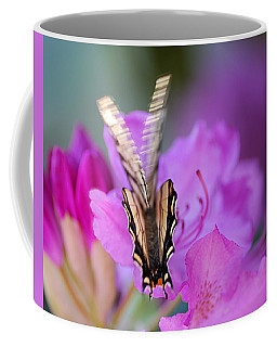 Coffee Mug featuring the photograph Scissorwings by Susan Capuano